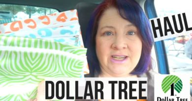 Dollar Tree Haul February 2017 New Items Check Out These Books! Yes More Bags to Hoard! 2