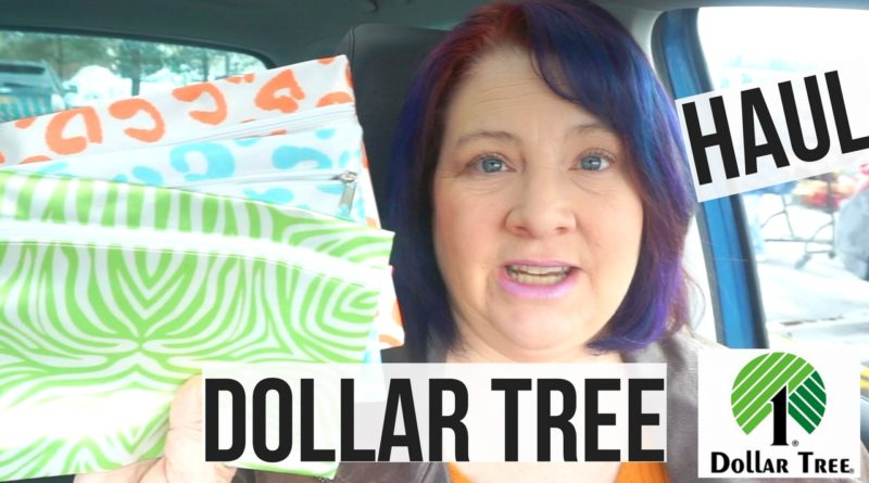Dollar Tree Haul February 2017 New Items Check Out These Books! Yes More Bags to Hoard! 1