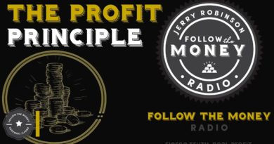 The Profit Principle 3