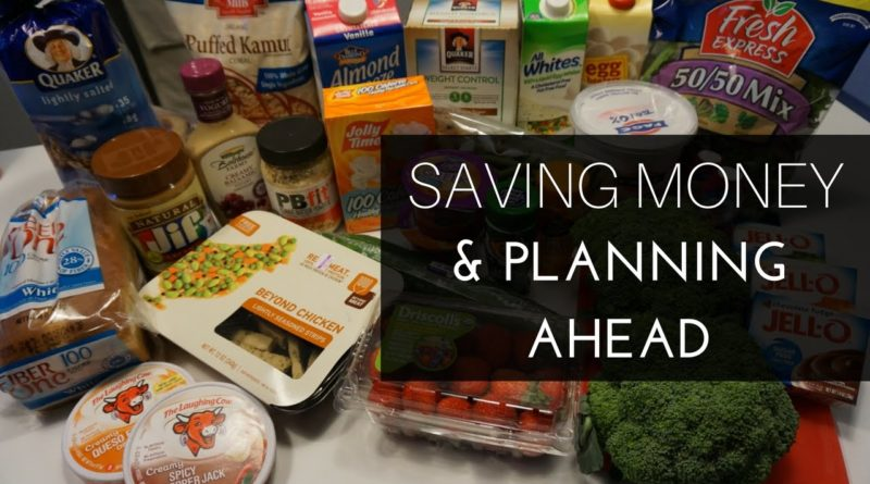 Saving Money and Staying Organized | Groceries, Travels, and Other Tips 1