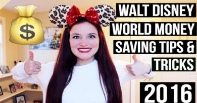 WALT DISNEY WORLD MONEY SAVING TIPS & TRICKS | 2016 4