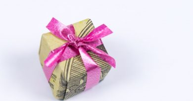 Christmas Money Gift Idea: Making a Dollar Origami Xmas Present 4