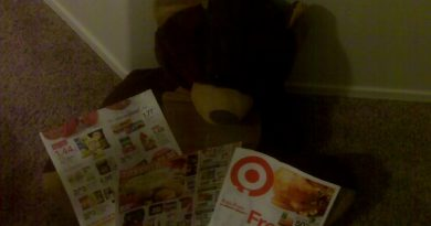 Bear the Truth - Saving Money on Groceries 3