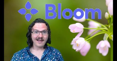 Bloom ICO Review - Evolving Credit Scoring with Blockchain 4