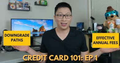 Credit Card 101: Downgrades + Effective Annual Fees 3