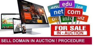 How to Sell Domain Name in Auction to Make Money ! Complete Procedure 3