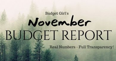 November Budget Report - Real Numbers, Full Transparency! 3