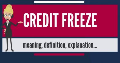 What is CREDIT FREEZE  What does CREDIT FREEZE mean  CREDIT FREEZE meaning, definition & explanation 2