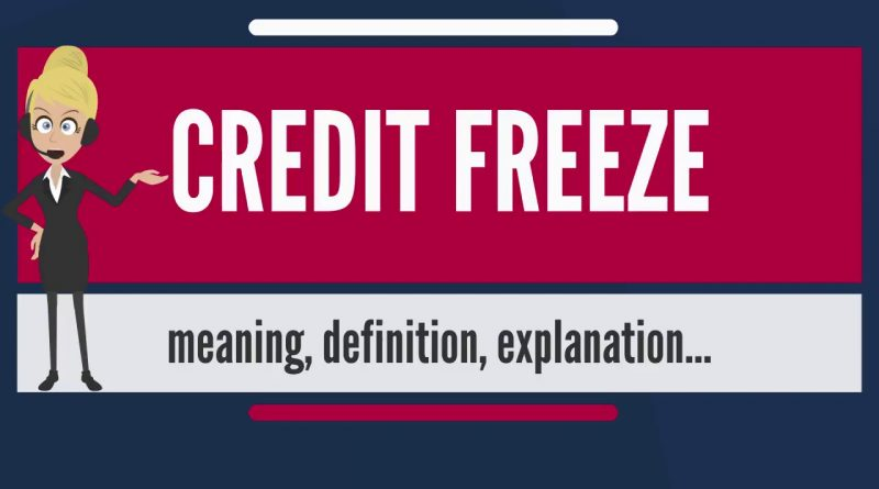 What is CREDIT FREEZE  What does CREDIT FREEZE mean  CREDIT FREEZE meaning, definition & explanation 1