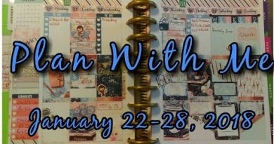 Plan With Me January 22 Through 28 2018 Classic Happy Planner 4