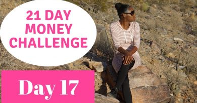 21 Day Money Challenge   Day 17   Should You Save While Paying Off Debt? 4