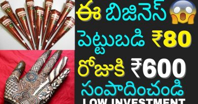 Low Investment High Profit Mehandi Cone Business idea 2018 | Home Based Small Business | in telugu 3
