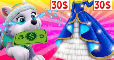 Paw Patrol Full Episodes | Pups Save Skye Saving Money To Buy Dresses | Animation Movies For Kids 2