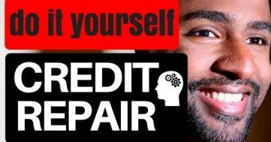 Repair Your Own Credit - Do It Yourself Credit Repair - Remove Negative Items and Hard Inquiries 3