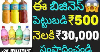 Low Investment High Profit Phenyl/Phenol making Business Idea 2018 | Earn money at home | in telugu 2