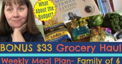 BONUS Grocery Haul- My Second Weekly Trip 4