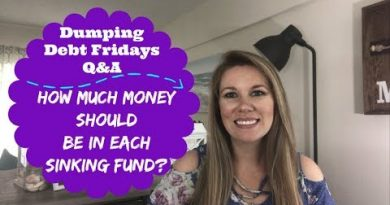 Dumping Debt Fridays | Q&A, Money Wins AND Giveaway WINNER | How Much Should Be In My Sinking Funds? 4