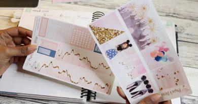 Plan With Me: Paper Dove Shop Aurora/ Disney Week 3