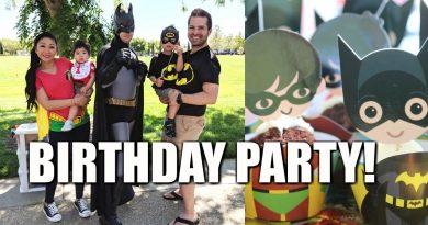 LEGO BATMAN ROBIN BIRTHDAY PARTY! 2