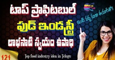 Best Small scale food industry ideas in telugu | Cookies making business at home for womens - 121 2