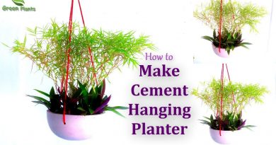 How to Make Cement Hanging Planter | Easy Hanging Planter Ideas | Garden DIY Ideas //GREEN PLANTS 3