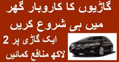 Best Business in Pakistan Car Business Business ideas high profit Business 4