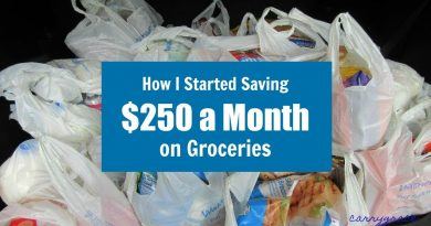 How I Started Saving $250 a Month on Groceries | How To Save Money on Groceries 3