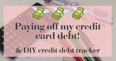 Budget Planning: Paying Off My Credit Cards & DIY Credit Card Debt Tracker 3