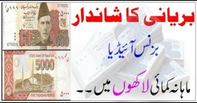 Biryani Small Business Ideas in Pakistan - Earn Money - Muhammad Rauf 2