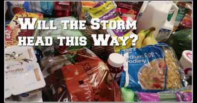 $104 grocery haul and the meal plan | Braving storm Walmart amongst all the hurricane prep! 2