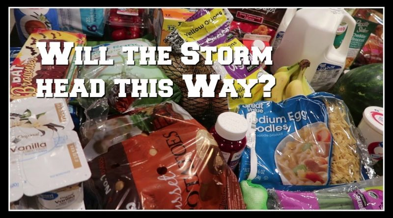 $104 grocery haul and the meal plan | Braving storm Walmart amongst all the hurricane prep! 1