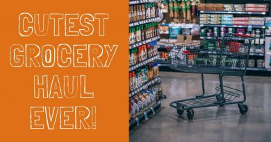 HOW WE SPEND LESS THAN $400 A MONTH ON GROCERIES FOR A FAMILY OF 4 4