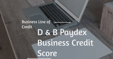 Business Line Of Credit: D & B Paydex Business Credit Score 3