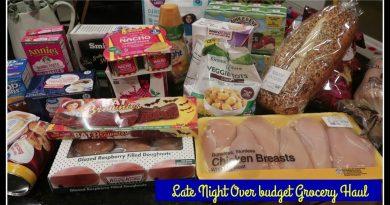 My weekly Walmart haul & Meal Plan + a sneak peek at the cookbook! 3