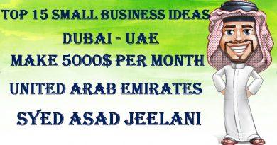 TOP 15 SMALL BUSINESS IDEAS IN DUBAI - UAE MAKE MONEY 5000$ PER MONTH 2