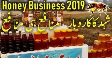 Honey Business | Small business idea in Pakistan | Honey business make money | Honey Pakistan 2