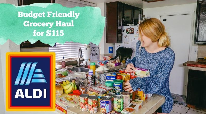 Affordable ALDI Grocery Haul! Grocery Store Budget! 1