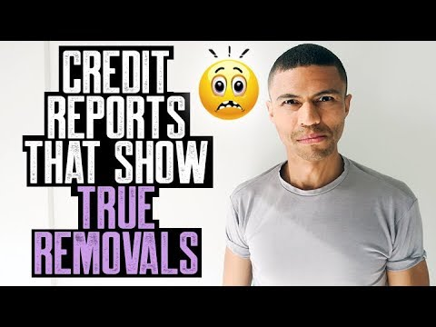 CREDIT REPORTS THAT SHOW TRUE REMOVALS || CREDIT REPAIR REVIEW 1