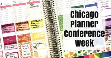 Plan With Me   Erin Condren   Rainbow Week 3