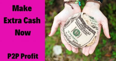 Extra Money Earning Ideas Ormond Beach FL - Online Income 3