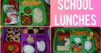 BACK TO SCHOOL LUNCH IDEAS FOR KIDS | BENTGO LUNCHES 2