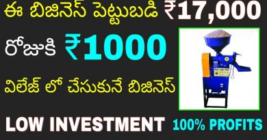 New Low Investment High Profit Mini Rice Mill Business idea 2019   Earn Money from Home   in telugu 4