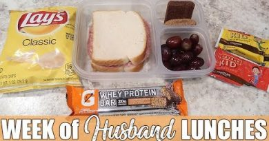 More Cold Lunch Ideas | What I Packed My Husband for Lunch | Money Saving Lunches 2