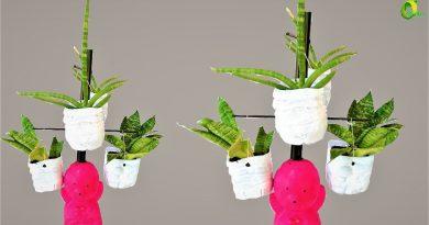 planter stand  ideas/snake plant decoration/plastic bottle idea//ORGANIC GARDEN 3