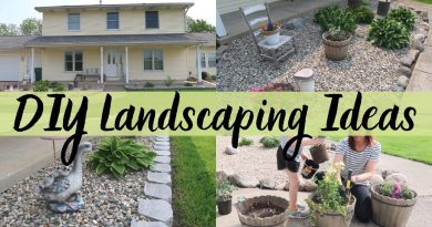 DIY LANDSCAPING IDEAS | LANDSCAPING ON A BUDGET | MONEY SAVINGS TIPS ON DIY LANDSCAPING 2