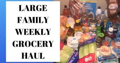 Weekly Grocery Haul - Large Family 4