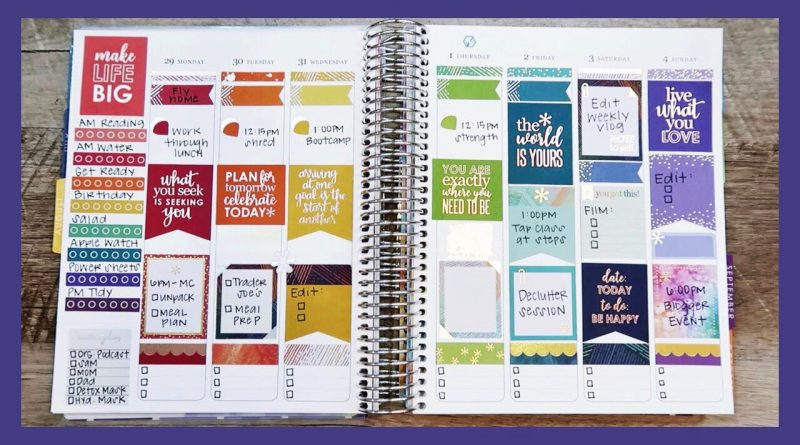 Plan With Me Using ONE Erin Condren Sticker Book | #PlannerPlayoffs vs. Shay Budgets 1