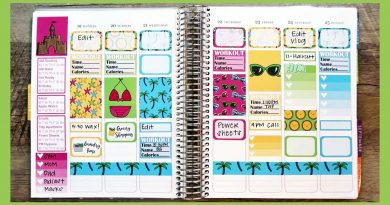 Plan With Me | Erin Condren Vertical Life Planner | Oh Hello Stationery Co 2