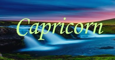 Capricorn *Someone is getting forced out!* 3