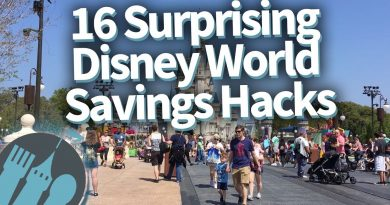Surprising Disney World Money Saving Tips! 3
